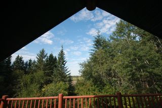 Photo 16: 56318 RGE RD 230: Rural Sturgeon County House for sale : MLS®# E4260922