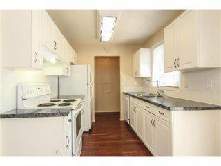 Photo 19: 3440 56 Street NE in Calgary: Temple House for sale : MLS®# C4004202
