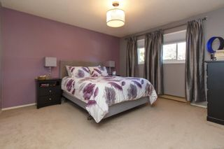 Photo 16: 151 Obed Ave in : SW Gorge Half Duplex for sale (Saanich West)  : MLS®# 857575