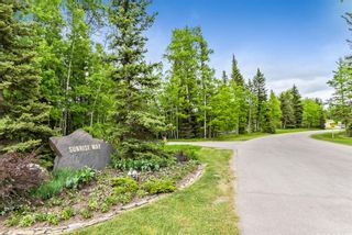 Photo 15: 108 Sunrise Way: Rural Foothills County Detached for sale : MLS®# A1090786