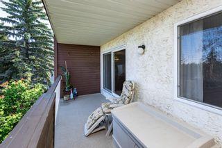 Photo 32: 312 5520 RIVERBEND Road in Edmonton: Zone 14 Condo for sale : MLS®# E4249489