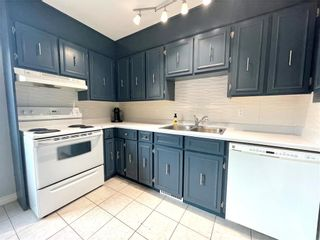Photo 10: 201 THOMAS BERRY Street in Winnipeg: St Boniface Residential for sale (2A)  : MLS®# 202116629