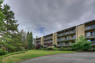 Photo 2: 116 3277 Quadra St in VICTORIA: SE Maplewood Condo for sale (Saanich East)  : MLS®# 768023