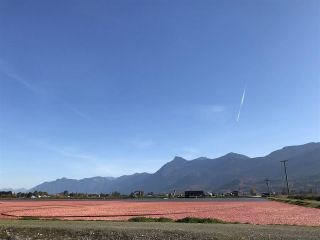 Photo 1: 8450 GIBSON ROAD in Chilliwack: Agriculture for sale : MLS®# C8037456