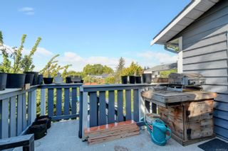 Photo 27: 3944 Rainbow St in : SE Swan Lake House for sale (Saanich East)  : MLS®# 876629