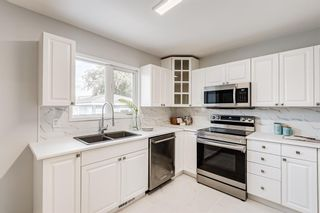 Photo 10: 78 Franklin Drive in Calgary: Fairview Detached for sale : MLS®# A1142495