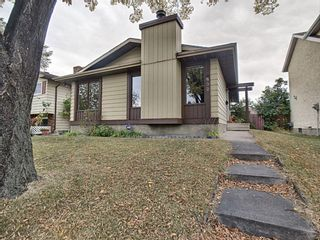 Main Photo: 532 Templevale Drive NE in Calgary: Temple Detached for sale : MLS®# A1037730
