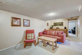 Photo 21: 114 Pinetree Bay NE in Calgary: Pineridge Detached for sale : MLS®# A1151101