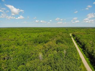 Photo 6: 0 WILDERNESS Road in Alexander RM: R28 Residential for sale : MLS®# 202012523