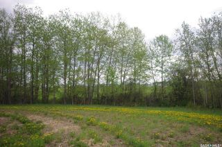Photo 11: Weiss Lakefront Acreage in Big River: Lot/Land for sale : MLS®# SK834150