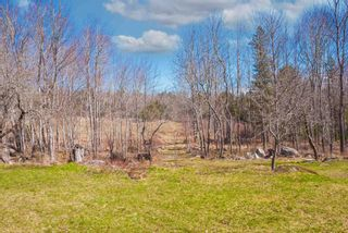 Photo 26: 26 Highway 10 in Springfield: 400-Annapolis County Residential for sale (Annapolis Valley)  : MLS®# 202109130