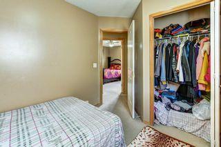 Photo 14: 243 TARACOVE ESTATE Drive NE in Calgary: Taradale Detached for sale : MLS®# C4303627