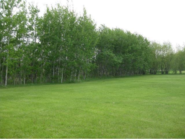 Photo 20: Photos: 1870 BRAY Road West in WINNIPEG: Birdshill Area Residential for sale (North East Winnipeg)  : MLS®# 1210868