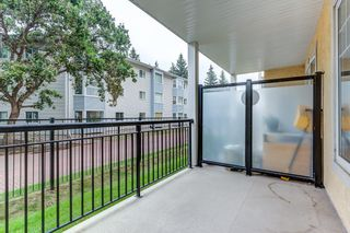 Photo 23: 125 9820 165 Street S in Edmonton: Zone 22 Condo for sale : MLS®# E4256146