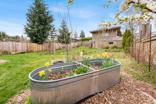 Photo 15: 640 Alder St in : CR Campbell River Central House for sale (Campbell River)  : MLS®# 872134