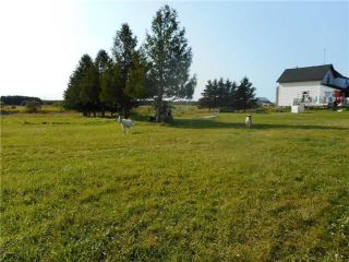 Photo 14: 395413 County Rd 12 in Amaranth: Rural Amaranth House (1 1/2 Storey) for sale : MLS®# X4146021