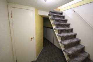 Photo 24: : Rural Camrose County House for sale : MLS®# E4262815