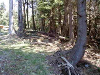 "Photo 4: LOT 3 FORIN ROAD: Keats Island Land for sale in ""EASTBOURNE"" (Sunshine Coast)  : MLS®# R2459870"