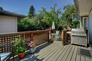 Photo 25: 4151 42 Street SW in Calgary: Glamorgan Detached for sale : MLS®# A1131147