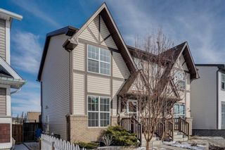 Photo 41: 155 ELGIN MEADOWS Gardens SE in Calgary: McKenzie Towne Semi Detached for sale : MLS®# C4299910