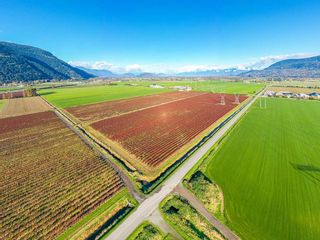 Photo 6: 4081 DIXON Road: Agri-Business for sale in Abbotsford: MLS®# C8035569