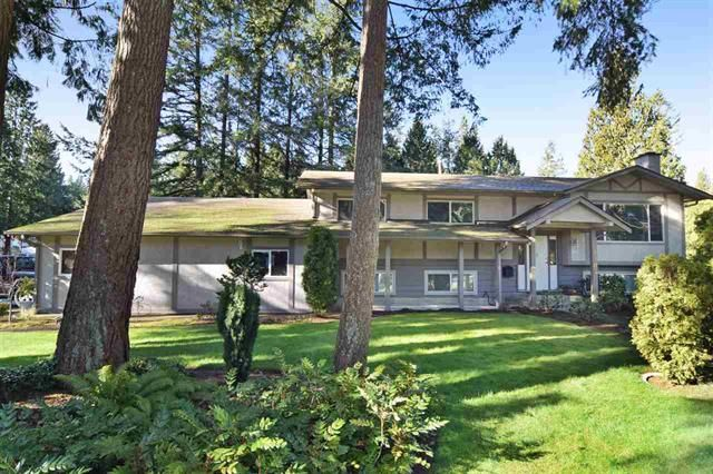 Main Photo: 4185 204 in Langley: Brookswood Langley House for sale : MLS®# R2032704