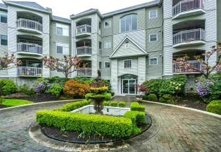 """Photo 1: 113 5677 208 Street in Langley: Langley City Condo  in """"IVY LEA"""" : MLS®# R2261004"""
