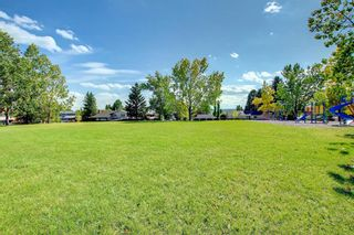 Photo 43: 216 Silver Springs Green NW in Calgary: Silver Springs Detached for sale : MLS®# A1147085