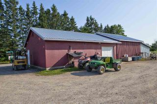 Photo 5: 2969 Highway 1 in Aylesford East: 404-Kings County Farm for sale (Annapolis Valley)  : MLS®# 201919454