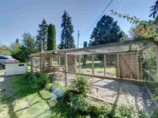 Photo 24: 5761 MCLAUGHAN Road in Sechelt: Sechelt District House for sale (Sunshine Coast)  : MLS®# R2479077