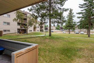 Photo 36:  in Edmonton: Zone 35 Condo for sale : MLS®# E4257107