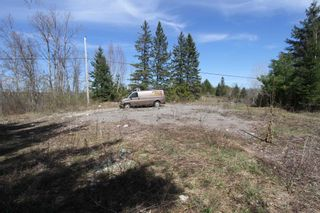 Photo 7: 259 County Rd 41 Road in Kawartha Lakes: Rural Bexley Property for sale : MLS®# X5210398