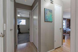 Photo 13: 255 Maitland Crescent NE in Calgary: Marlborough Park Detached for sale : MLS®# A1061446