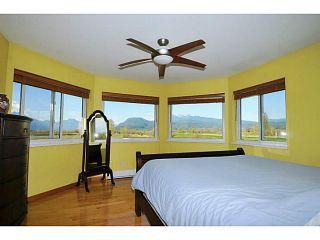 Photo 14: 20981 132ND Avenue in Maple Ridge: Northwest Maple Ridge House for sale : MLS®# V1116009