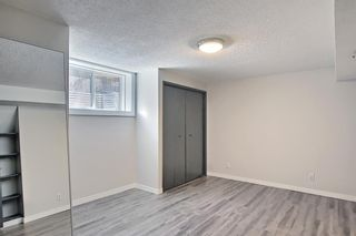 Photo 22: 3423 30A Avenue SE in Calgary: Dover Detached for sale : MLS®# A1114243