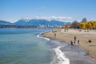 "Photo 13: 102 2125 YORK Avenue in Vancouver: Kitsilano Condo for sale in ""YORK GARDENS"" (Vancouver West)  : MLS®# R2593910"