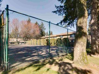 """Photo 32: 107 9475 PRINCE CHARLES Boulevard in Surrey: Queen Mary Park Surrey Townhouse for sale in """"Prince Charles Estates"""" : MLS®# R2567585"""