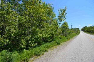 Photo 3: Lot Townshipline Road in Ohio: 401-Digby County Vacant Land for sale (Annapolis Valley)  : MLS®# 202114115