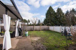 Photo 18: 15718 96 Avenue in Surrey: Fleetwood Tynehead House for sale : MLS®# R2533752