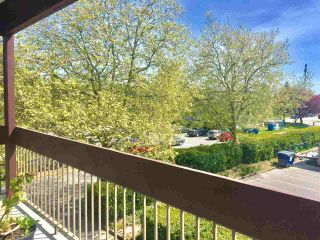 "Photo 13: 208 8860 NO 1 Road in Richmond: Boyd Park Condo for sale in ""APPLE GREENE"" : MLS®# R2365863"