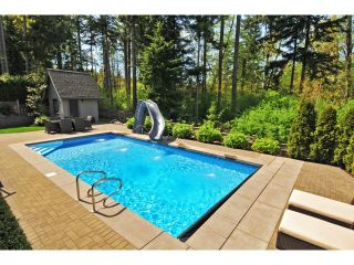 "Photo 54: 2911 146 Street in Surrey: Elgin Chantrell House for sale in ""ELGIN RIDGE"" (South Surrey White Rock)  : MLS®# F1425975"