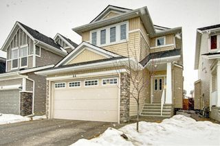 Main Photo: 44 Redstone Drive NE in Calgary: Redstone Detached for sale : MLS®# A1106523