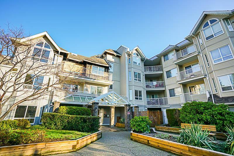 """Main Photo: 110 13475 96 Avenue in Surrey: Whalley Condo for sale in """"IVY CREEK"""" (North Surrey)  : MLS®# R2226861"""