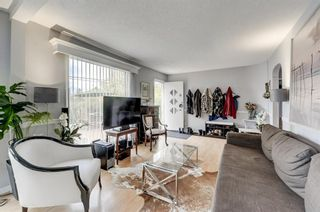 Photo 4: 2416 48 Street NW in Calgary: Montgomery Detached for sale : MLS®# A1063457