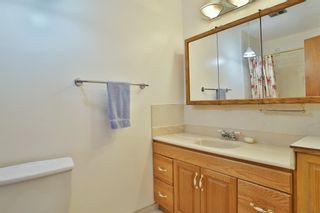 Photo 20: 116 Huntford Road NE in Calgary: Huntington Hills Detached for sale : MLS®# A1147391