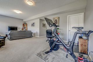 Photo 37: 77 Walden Close SE in Calgary: Walden Detached for sale : MLS®# A1106981