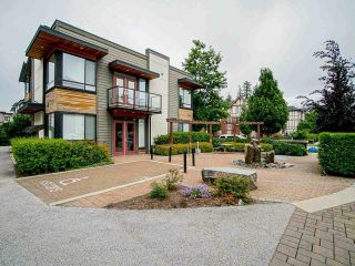 """Photo 35: 60 7811 209 Street in Langley: Willoughby Heights Townhouse for sale in """"Exchange"""" : MLS®# R2590581"""
