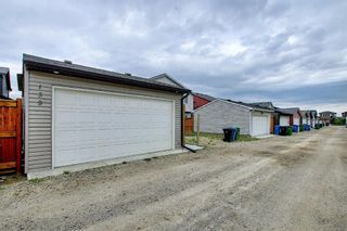 Photo 49: 139 Howse Lane NE in Calgary: Livingston Detached for sale : MLS®# A1118949