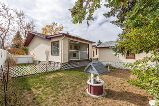 Photo 39: 144 Franklin Drive SE in Calgary: Fairview Detached for sale : MLS®# A1150198