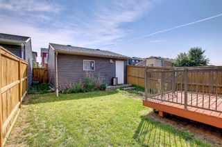 Photo 35: 132 Evansborough Way NW in Calgary: Evanston Detached for sale : MLS®# A1145739